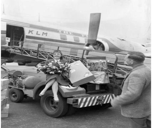 95 років історії авіакомпанії KLM в ретро фотографіях 11